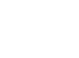 TravelPulse logo